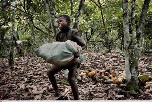 child-slavery-chocolate-industry-ivory-coast